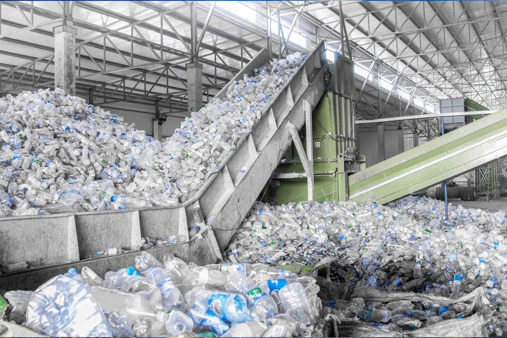 Black Swan: Industria de Reciclare in Pandemie